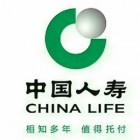 中国人寿保险股份有限公司文山支公司