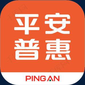 平安普惠信息服务有限公司————文山分公司